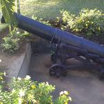 Canon at Tobago Fort